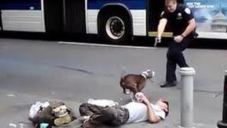 getlinkyoutube.com-Pit bull enloquecido ataca a sus dueños - Pit bull attacks his crazed owners.