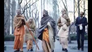 We become Cyuta, Fallen Down, but Kṛṣṇa is Acyuta  - Prabhupada 0584