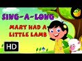 Karaoke: Marry Had A Little - Songs With Lyrics - CartoonAnimated Rhymes For Kids