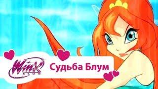getlinkyoutube.com-Винкс Клуб - Судьба Блум (Winx club Movie) | Мультики про фей для девочек