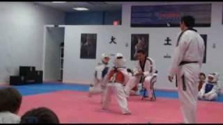 Julian Miami Taekwondo 2