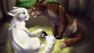 My Top 20 Favourite Warrior Cat Couples
