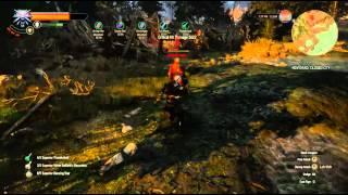 getlinkyoutube.com-Witcher 3 Alchemist tank build killing guards