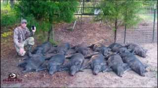 getlinkyoutube.com-JAGER PRO™ Hog Trapping (14)- 12/12 Success in June Corn
