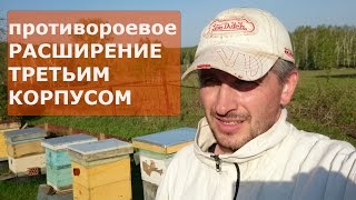 getlinkyoutube.com-ПОСТАНОВКА ТРЕТЬЕГО КОРПУСА