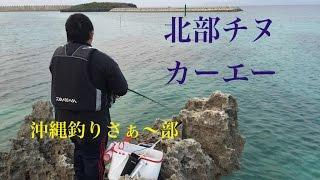 【沖縄北部遠征】 チヌ カーエーを狙う 沖縄釣りさぁ〜部その05