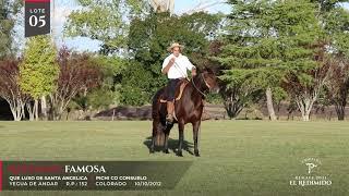 Miniatura video Lote 5 - Remate El Redimido
