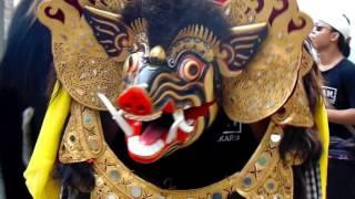 getlinkyoutube.com-Ngelawang Barong Bangkung/Bangkal (ST. TDC - SIDAKARYA)