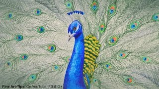 getlinkyoutube.com-How to Draw a Peacock With Color Pencils - Drawing Feathers and Birds