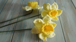 getlinkyoutube.com-(crochet) How To Crochet a Daffodil - Yarn Scrap Friday