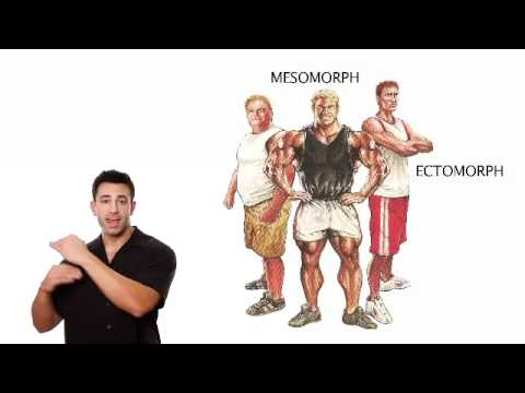 Muscle Building Tips To Build Muscle Without Fat From The Muscle Maximizer Kyle Leon