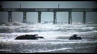 getlinkyoutube.com-The Joe Kenney Daytona Flip Off