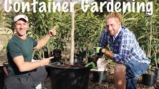getlinkyoutube.com-Container Growing a Fruit Tree in Your Garden