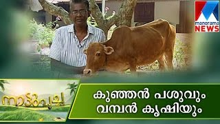 getlinkyoutube.com-Nature farming for future | Manorama News | Nattupacha