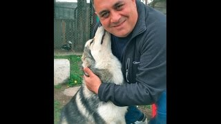 getlinkyoutube.com-Девочке из Копейска подарили щенка хаски от имени Владимира Путина