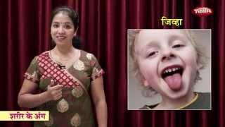 Body Parts in Hindi | Hindi Body Parts | Learn Human Body Parts in Hindi | Learn Hindi