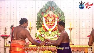 தாவடி வட பத்திரகாளி அம்பாள் கோவில் பத்தாம் நாள் இரவுத்திருவிழா - 05.05.2017