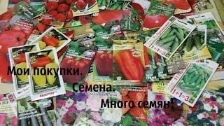 getlinkyoutube.com-Отличные семена для супер урожая!!!