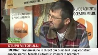 getlinkyoutube.com-Avantajele folosirii stupilor din poliurentan produsi in Romania