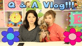 getlinkyoutube.com-Little Kelly Vlogs - FIRST EVER Q&A! w/Little Carly