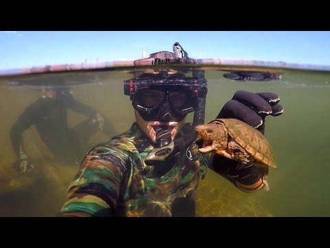Found Knife, Razor Blade and $50 Swimbait Underwater in River! (Freediving)