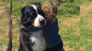 getlinkyoutube.com-Little Girl Is Growing Up With Two Giant Dogs
