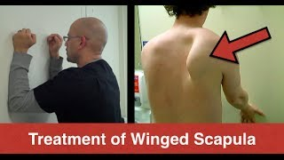 getlinkyoutube.com-BEST Winged Scapula Exercises (Fix Scapular Winging Treatment) - Serratus Anterior