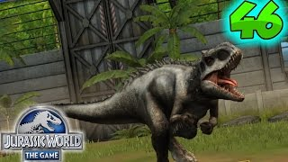 getlinkyoutube.com-Tournament montage?!|Jurassic World the game|Episode Forty Six|