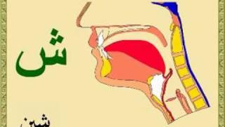 getlinkyoutube.com-مخارج الحروف العربية و أسمائها بالرسم التوضيحي