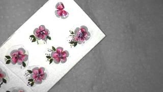 getlinkyoutube.com-Flor de Carga Dupla! Adesivo na caixa de leite!