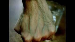 getlinkyoutube.com-keajaiban Allah pada urat tangan manusia