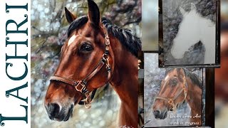 getlinkyoutube.com-Speed Painting a horse in oil & acrylic paint - Time Lapse Demo by Lachri