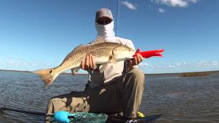 getlinkyoutube.com-Sight Casting Redfish From A Kayak