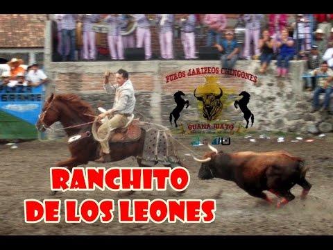 Jaripeo del Ranchito de los Leones (Oct-05-2014)