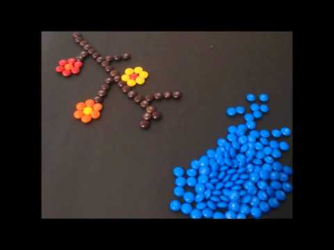 THE M & M's THE FILM (2).wmv
