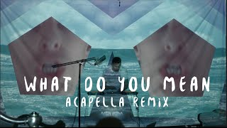 getlinkyoutube.com-Justin Bieber - What Do You Mean? - Dillon Francis - Acapella Remix