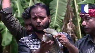 getlinkyoutube.com-A walk to Summer Land Farm in kerala india | HARITHAM SUNDHARAM 18 03 2016 Part 02 | Kaumudy TV