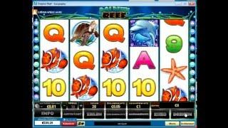 getlinkyoutube.com-Dolphin Reef Tricks -  Dolphin Reef kostenlos spielen