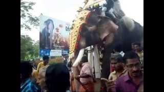 getlinkyoutube.com-THECHIKOTTUKAVU RAMACHANDRAN at Kattakambal pooram 2015