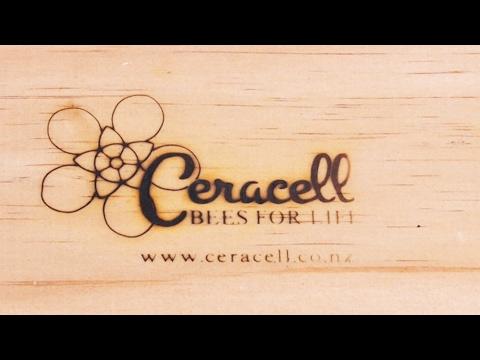 Beekeeping Basics with Bruce Clow - Branding