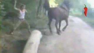 getlinkyoutube.com-Живодер получил по лицу от лошади