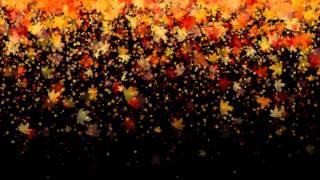 getlinkyoutube.com-Leaves Falling -  Royalty Free effect video Footage VFX