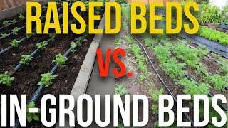 getlinkyoutube.com-IN PRACTICE - Raised Beds vs In-Ground Beds