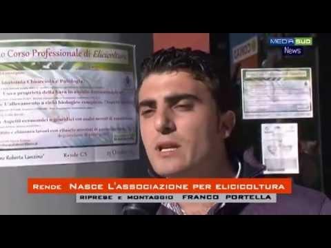 Rende:  Associazione Elicicultura  in Calabria  (Allevamento di lumache)