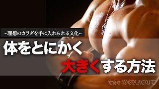 getlinkyoutube.com-とにかく筋肉を大きくする方法。ボディビルダーになるためのトレーニングと食事方法。