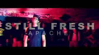 Still Fresh - Apache
