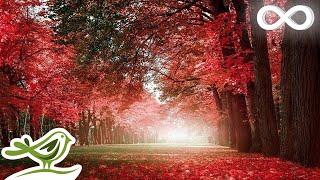 getlinkyoutube.com-Relaxing Beautiful Romantic Music: Piano, Violin, Cello, Guitar ★74