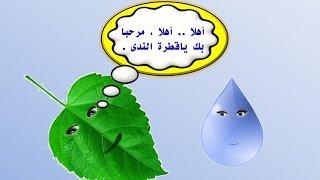 getlinkyoutube.com-قطرة ندى وورقة شجرة - لغة عربية للصف الرابع -الفصل الدراسي الأول 2016