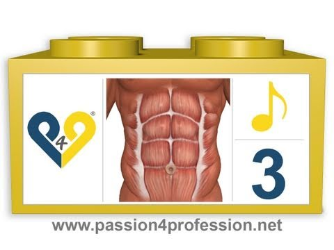 Abdominales en 8 minutos - Nivel 3 - P4P Music