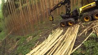 getlinkyoutube.com-PONSSE Ergo logging eucalyptus